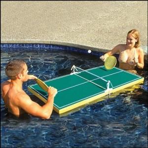 ping-pong-300x300
