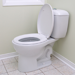 toilet_square